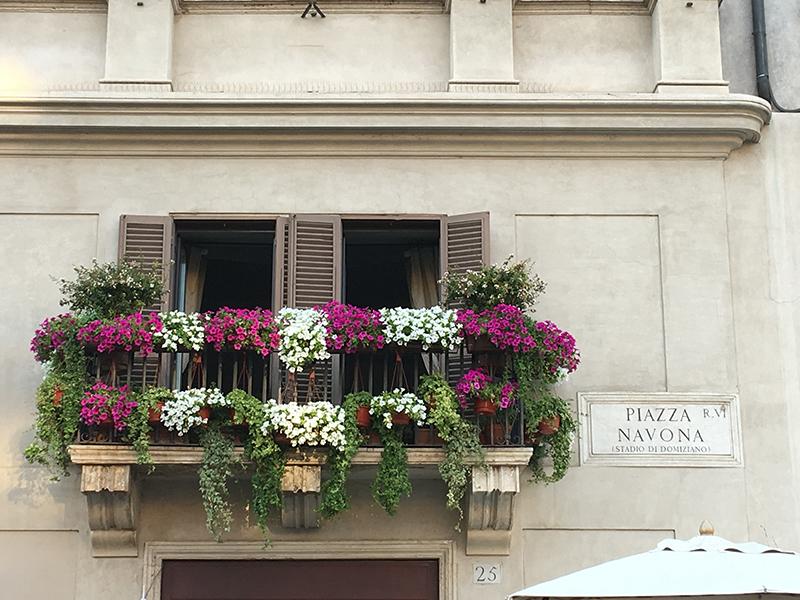 piazza-novona-1